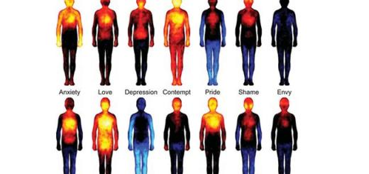 How emotions harm your body - Know the facts
