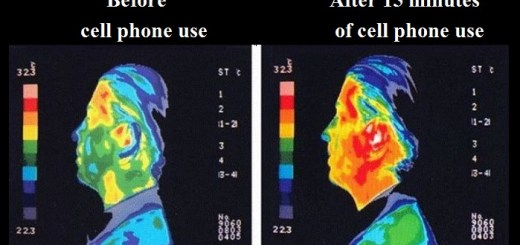 5 Cell Phones with highest radiation count