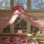 Chic Princess party decoration