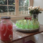 spring butterfly baby shower  (147)