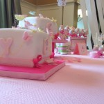 spring butterfly baby shower  (67)