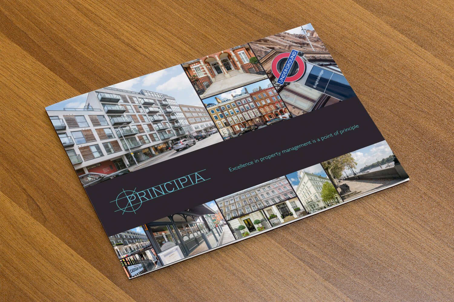The Principia promotional brochure cover