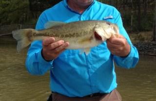 Jeff Lowdermilk, bass caught on Lake James