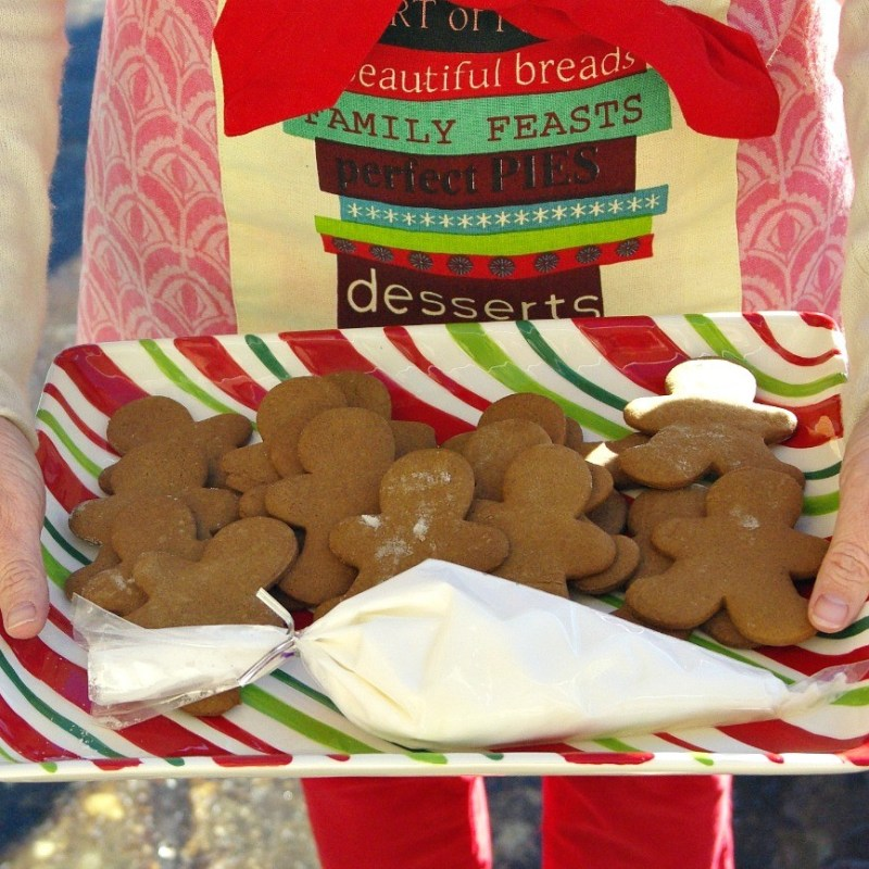 GINGERBREAD FRIENDS. . .