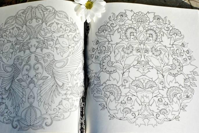 giftingabook5