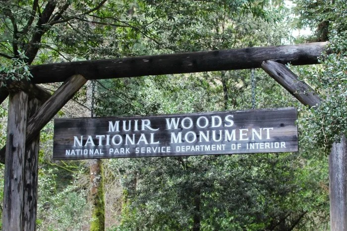 National Parks in the San Francisco Bay Area - Muir Woods