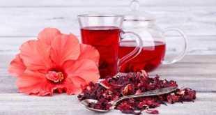 Trà từ hoa dâm bụt có tác dụng hạ sốt