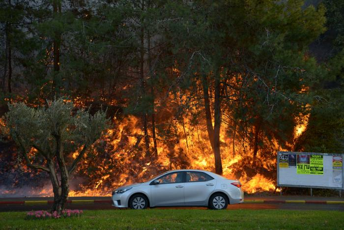 A car drives past burning trees as a wildfire rages in the northern city of Haifa, Israel November 24, 2016. REUTERS/Gil Eliyahu ISRAEL OUT. NO COMMERCIAL OR EDITORIAL SALES IN ISRAEL