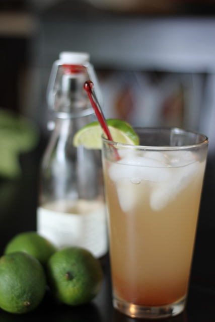 Moscow Mule recipe with a twist