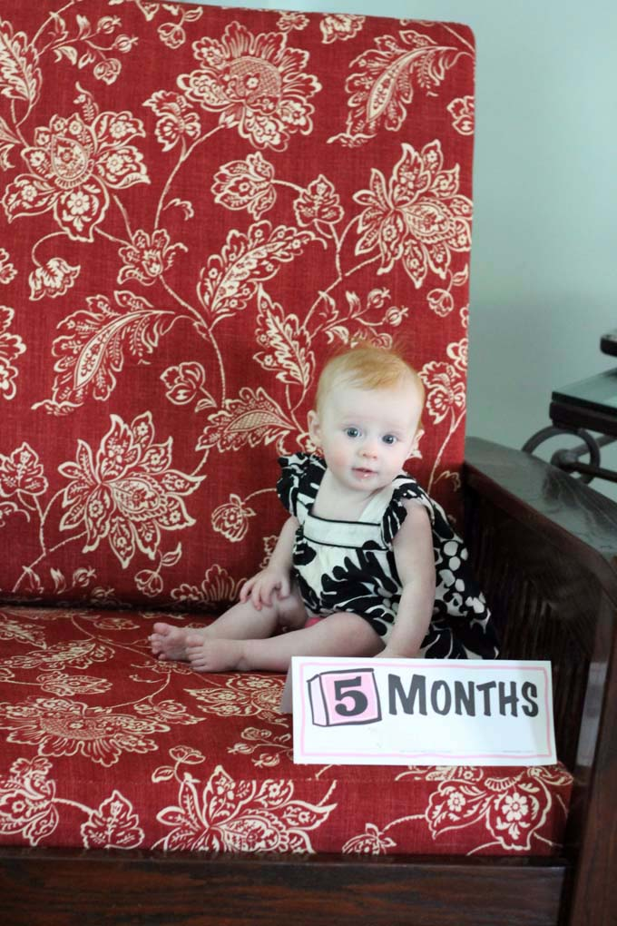 Five Month Old Baby Pictures