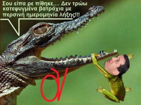 ΑΔΩΝΙΣ -ΒΑΤΡΑΧΟΣ -ΠΙΘΗΚΟΣ 3
