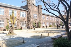 綺麗なキャンパス♪