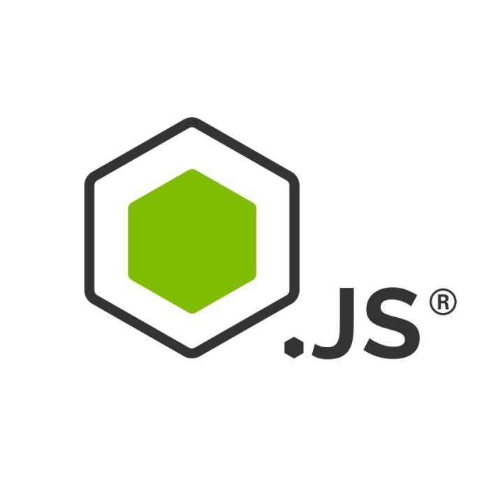 beginner node js server
