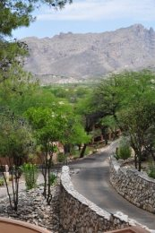 Westin La Paloma   New Renovations + Summer Specials!