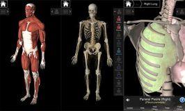 Reseña: Essential Anatomy 3, atlas de anatomía 3D en tu bolsillo