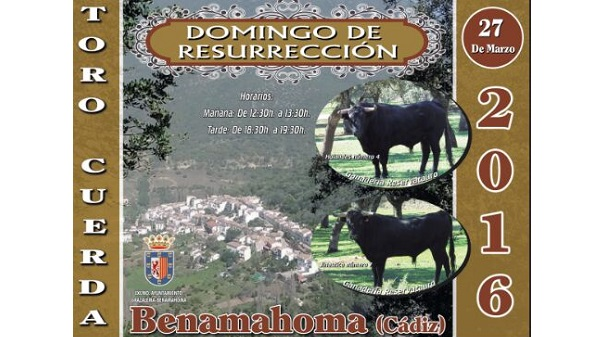 cartel toro benamahoma 2016-post