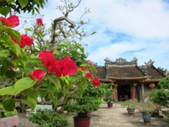 Colors in Hoi An