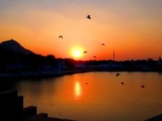 Pushkar Sunset