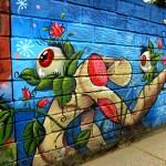 Medellin Graffiti (23)