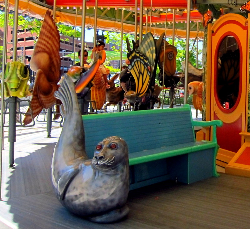 Harbor Seal Bench, greenway carousel
