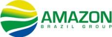 amazon brazil group