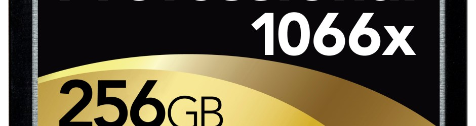 Carte-CF-Lexar-Professional-1066x-256Go
