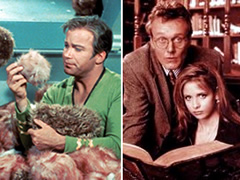 Star Trek tribbles and Buffy the Vampire Slayer studies