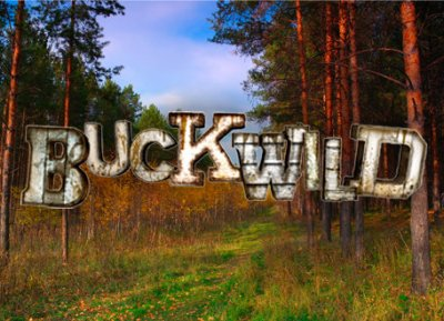 buckwild canceled?