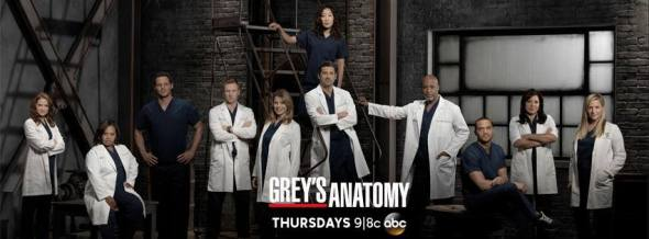Greys Anatomy: cancel or renew?