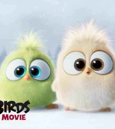 Angry Birds Movie Hatchlings