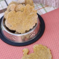 Homemade Thanksgiving Dog Treats