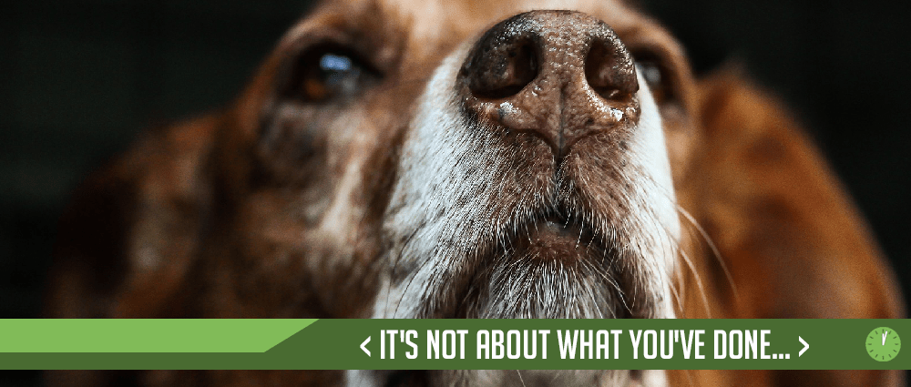 It's Not About What You've Done…