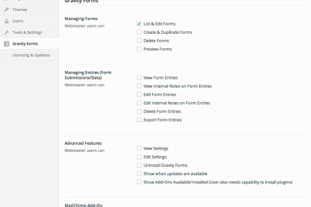 gravity forms settings webmaster pro