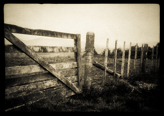 The Whenua & The Gate