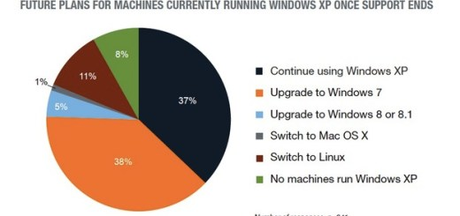 Study migrate windows xp
