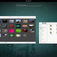 Ubuntu Gnome 14-04 spread window