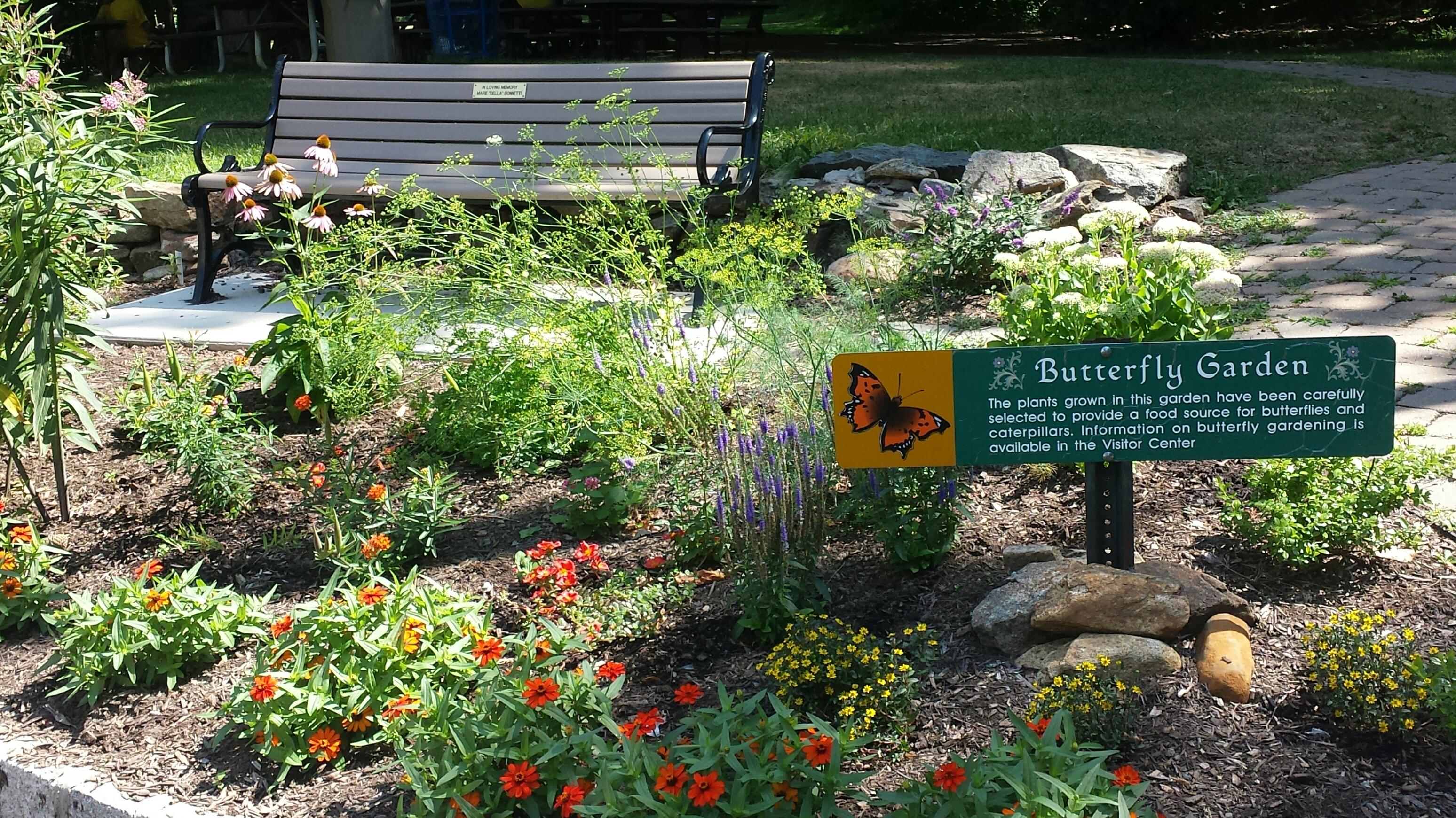Butterfly Garden U2013 County Of Union New Jersey
