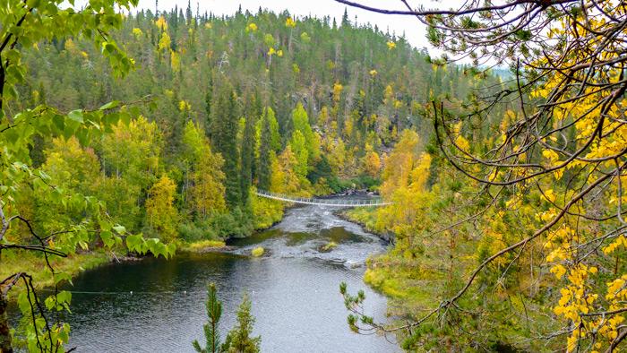Olanka_Nationalpark-September