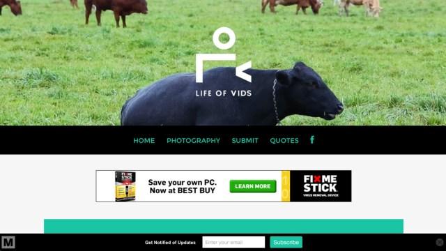 『LIFE OF VIDS』ウェブサイト