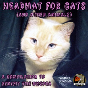 headhat-for-cats-and-other-animals
