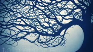 Scatty Stormborn & Sixo - Thin Error EP ft. Bleubird, David Ramos, Onry Ozzborn, Cas One