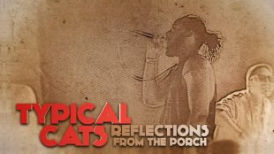 "Typical Cats – ""Reflections From The Porch"""