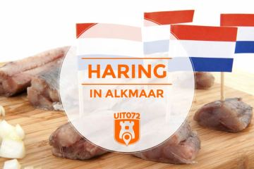 Haring in Alkmaar