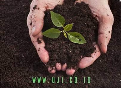 Cara Mengukur Kesuburan Tanah dan Alatnya