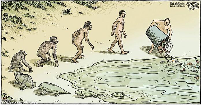 Evolution Cartoons To Celebrate Darwin Day