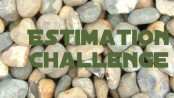 EstimationChallengeFeature-174x98