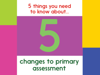 Primary_Assessment