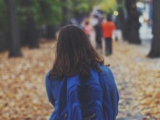 school_backpack-1149461_1920