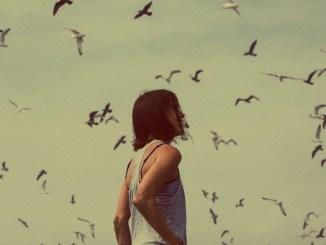 birds_twitter