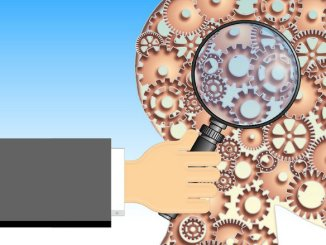 brain_feature